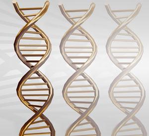 Poznano geny raka płuc i czerniaka.